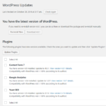 How often should I update WordPress, plugins and themes?