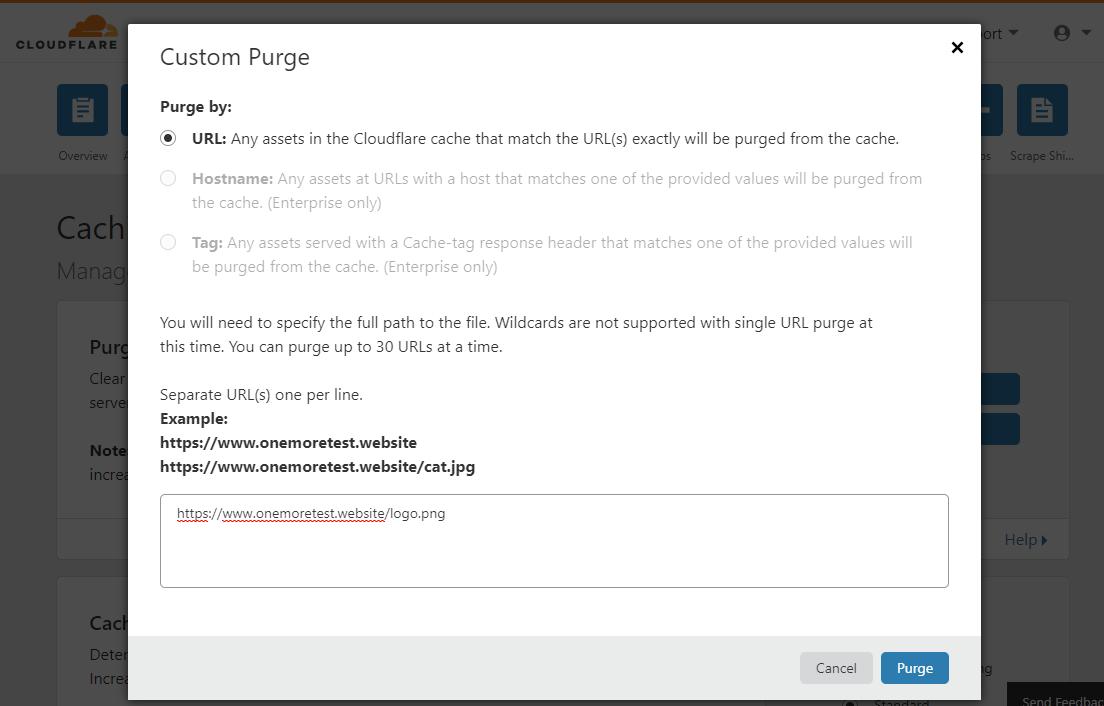 enter URLs to be purged