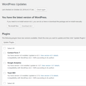 New WordPress Updates