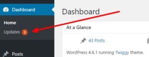 run-wordpress-updates
