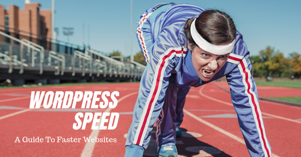 WordPress Slow? Speed Up WordPress Websites